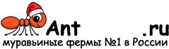 Муравьиные фермы AntFarms.ru - Улан-Удэ